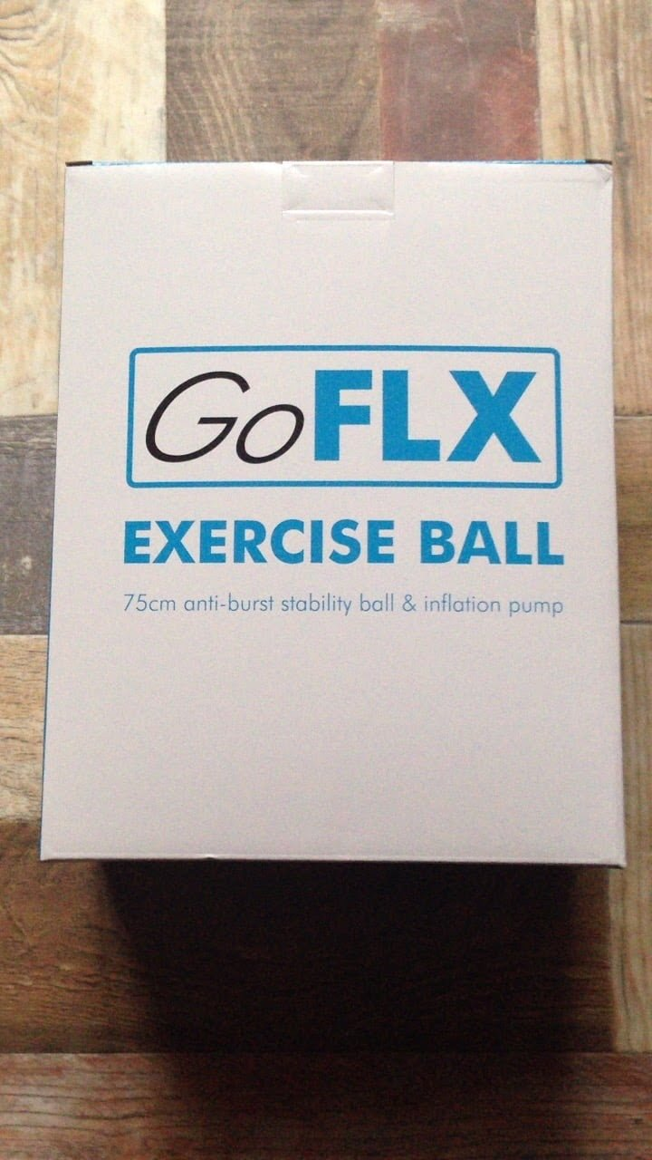 GoFLX バランスボール ポンプ付